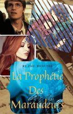 La Prophétie des Maraudeurs by Yellow_Lifes