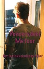 Penceredeki Meteor ( DÜZENLENECEK . ) by leylakkokulusayfalar
