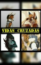 Vidas Cruzadas by slifer66