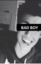 Bad boy or nah? (En pause) by movingoon
