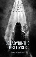 Le labyrinthe des livres by lapireauteuredumonde