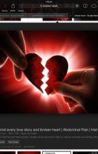 The broken heart by TeriPalmer