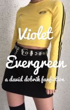 violet evergreen ☀︎ a david dobrik fanfiction by GeeGee_00