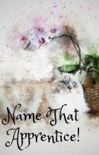 Name that apprentice! by PinkFluffyUnikitty
