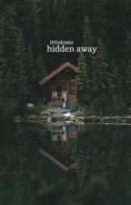 Hidden Away (18+) by littlekinks