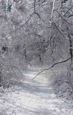 """Freezing Path"""