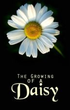 The Growing of a Daisy by katie3112