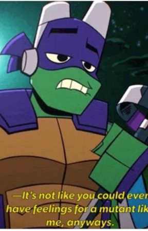 sad TMNT oneshots (requests open) - 2012 Donnie x sister reader