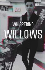 whispering willows Andy biersack x reader  by banditnorth