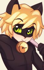 The new girl in Paris (Chat noir/ Adrien Agreste X reader) by Storm_Blackthorn
