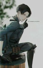 Levi x Reader Smut by SisuChan