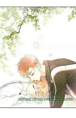 Đọc truyện [Full]《Truyện Tranh》Tình yêu là mùa hoa anh thảo