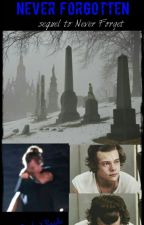 Never Forgotten [The sequel to: Never Forget {A Harry Styles X Reader FanFic} by Tomlinson_Wannabe