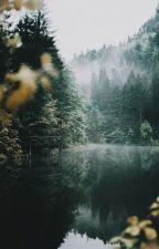 Las oscuras noches del bosque by 12Cromo