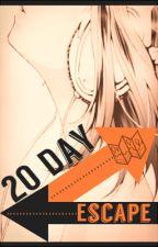 20 Day Escape (Len Kagamine) by AugmentedHope