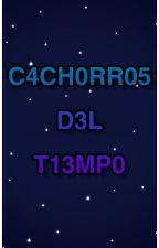 C4CH0RR05 D3L T13MP0 by MarowakDark-02