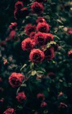 •Random Things With Nina• by NinaHonuaMea
