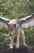 Life of a Teenage Werewolf by SebbyWolf