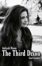 The Third Dixon ~Revised~ (Carl Grimes) ✔️ by rubymells