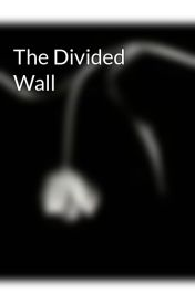 The Divided Wall by blonde2brunette