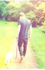 Walking *A One Direction Fanfic* by FablouisEllery