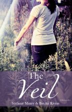 The Veil  ***ON HOLD*** by StefMaxey