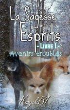 La Sagesse Des Esprits~Livre 1-Avennire Troubler by Kazuki51