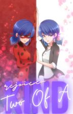 Two Of A Kind// Miraculous Ladybug✳️ by rejoiceo