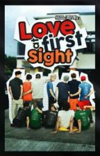 Love At First Sight (EXO BaekYeol, HunHan, KaiSoo, TaoRis FF) by sereinitea