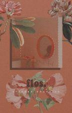 Flos Graphic Shop. by 97SKUNK