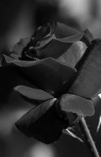 Os Meus Poemas by Eduardakariaba
