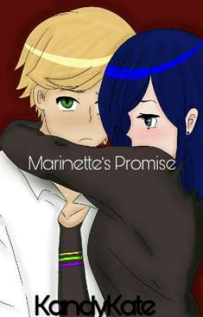 Miraculous: Marinette's Promise (Book Three Of the