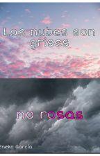 Las nubes son grises, no rosas by eneko5