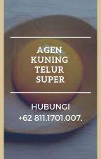 READY STOK!!! WA +62 811.1701.007, Jual Kuning Telur Pecah by agenkuningtelursuper