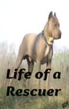 Life of a Rescuer by Pitties4Evr