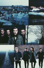 One Direction Hakkında Bilinmeyenler 2✖ by BayanStylesCupcake