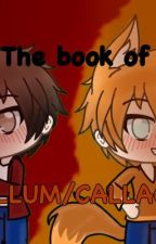 The Book Of Jallum/Callack  by MCfangirl_2810