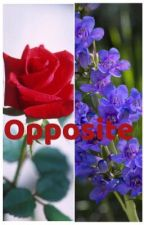 Opposite  by Olivia114Lps