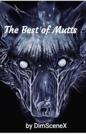 The Best of Mutts by DimSceneX
