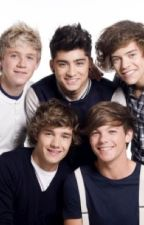 Living with One Direction- Our Story by ashleyrogers123