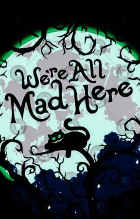 The Cheshire Cat (BNHA X OP Male Reader) - Harem - Wattpad