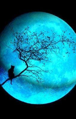 [Đồng Nhân HP] Blue Moon - Vị thần thứ ba [DROP]