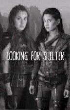 Looking for shelter (PrincessRover AU) by darksoul_brightsmile