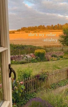 SHE'S MY COLLAR ; KATSUKI BAKUGO by ATTABVY