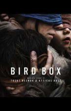 BirdBox Memes  by KellyDripps