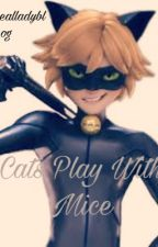 Cats play with mice//Chat Noir X Reader by fxtimaaa