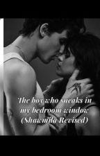The boy who sneaks in my bedroom window (Shawmila version) by Shawmila98