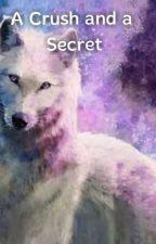 A Crush and a Secret by PrincessJin240