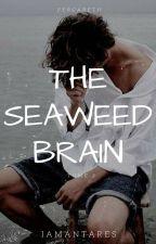 The Seaweed Brain (II) by iamantares