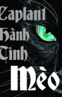 Đọc truyện Bí ẩn mèo đen